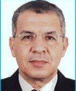 Mohsen El-Mekresh