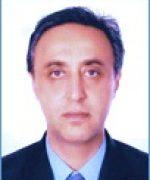 Wael Toson
